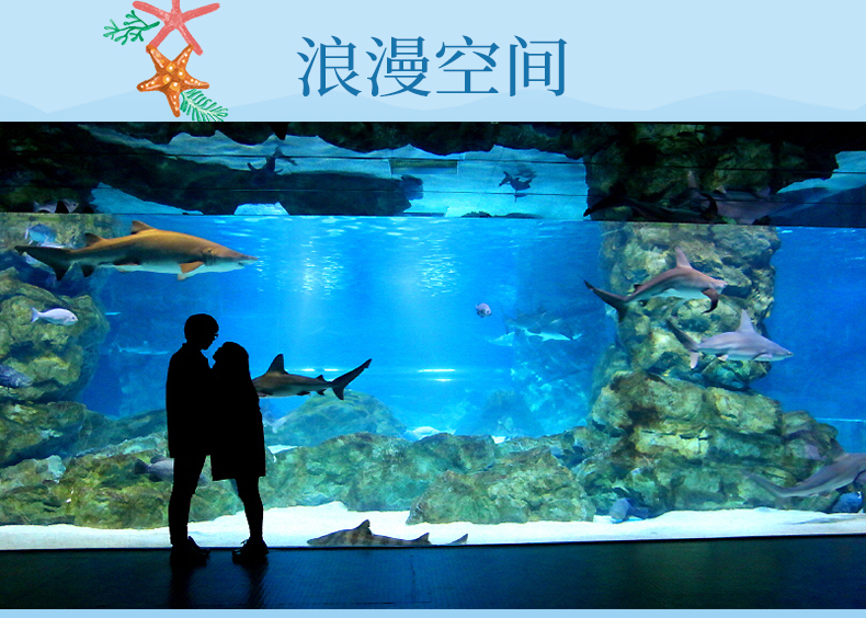 COEX水族馆-详情页_10.jpg