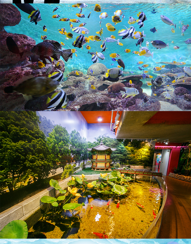 COEX水族館-詳情頁繁體_04.jpg