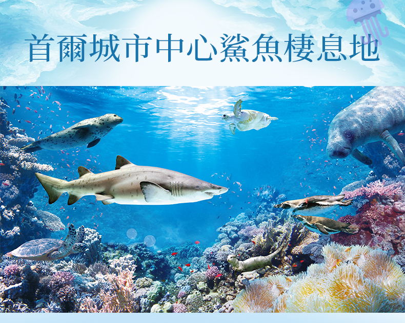COEX水族館-詳情頁繁體_05.jpg