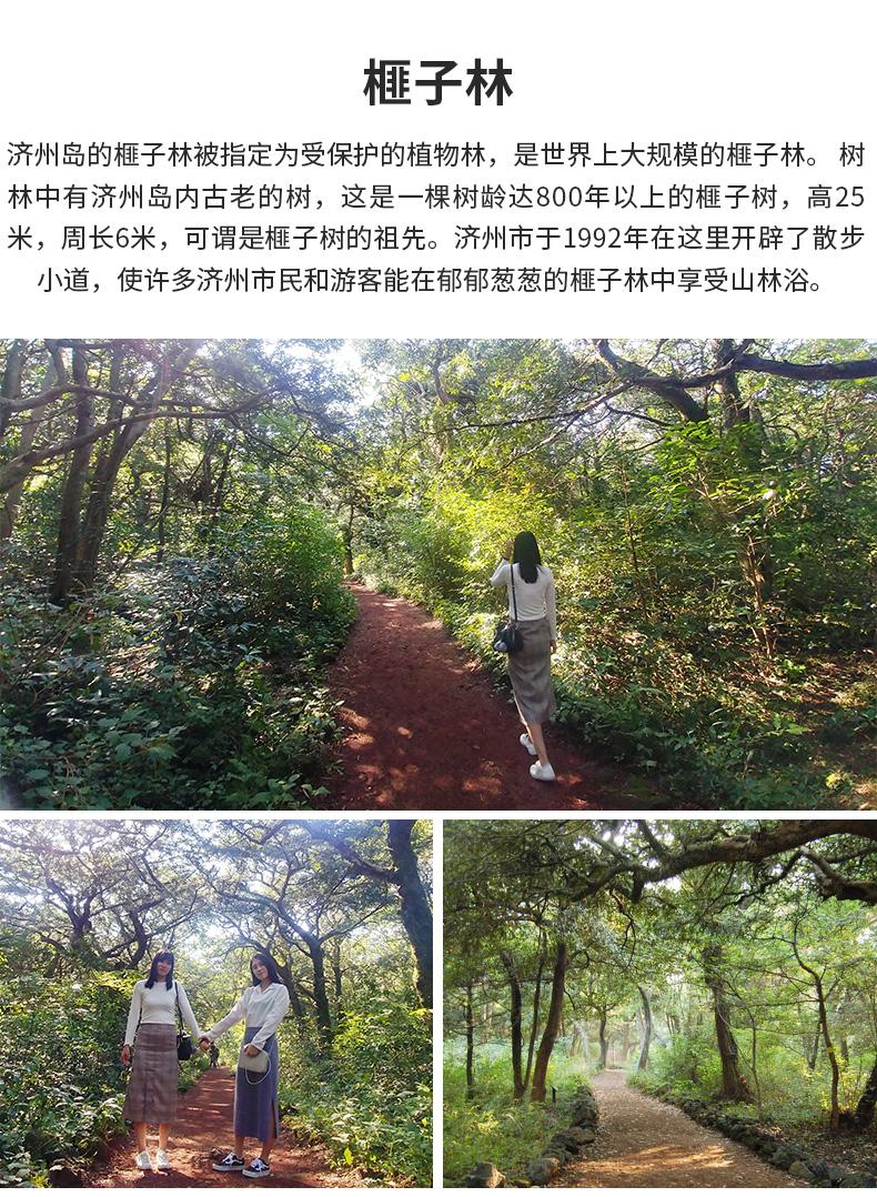 济州岛红星精品一日游-详情页_08.jpg