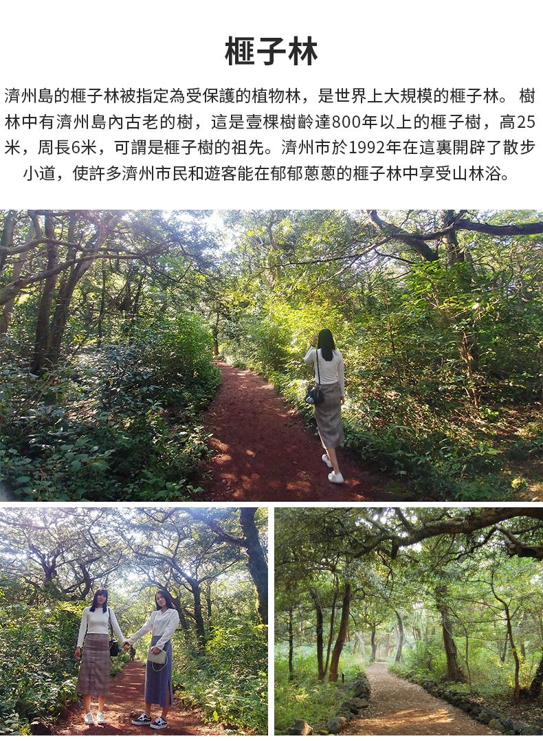 濟州島紅星精品一日遊-詳情頁繁體_08.jpg