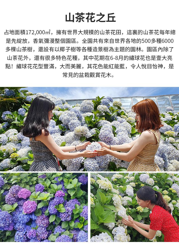 濟州島紅星精品一日遊-詳情頁繁體_12.jpg
