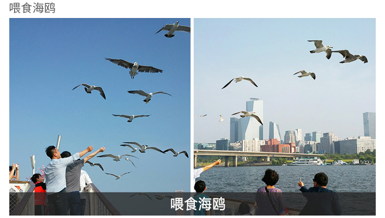 首尔汉江游览船E.LAND(不含自助餐)-详情页_15.jpg