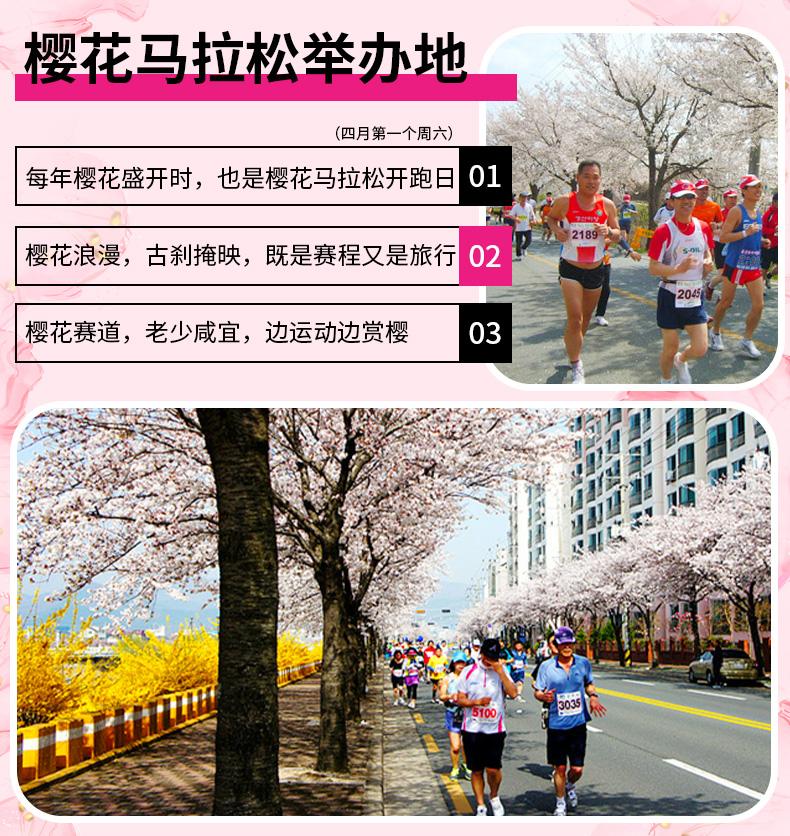 庆州樱花庆典一日游-详情页_03.jpg
