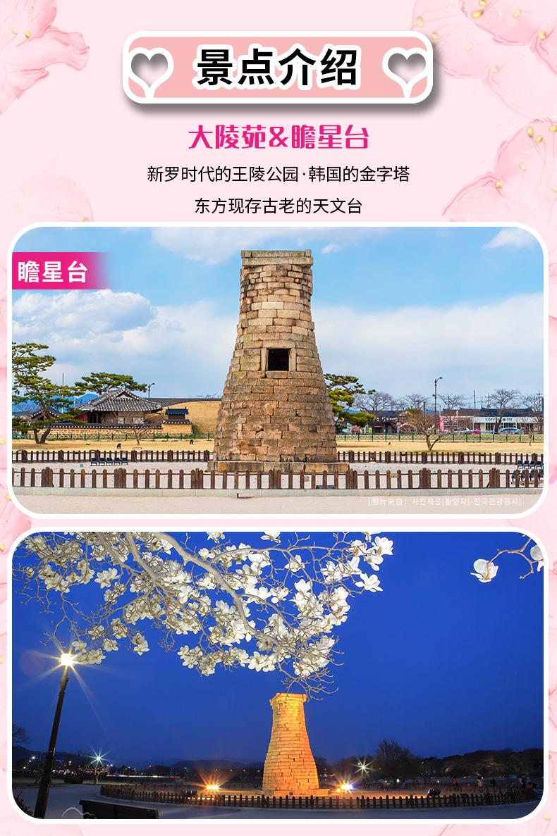 庆州樱花庆典一日游-详情页_04.jpg