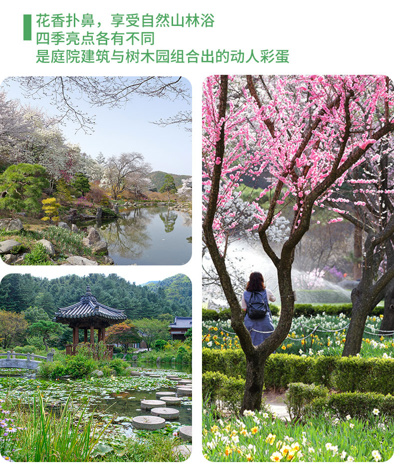 EG-TOUR-C加平&杨平-详情页_12.jpg