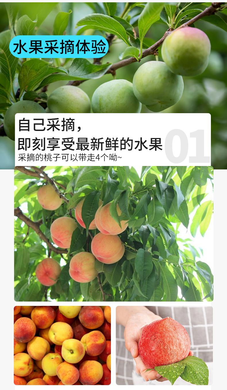 0710-江陵一日游-详情页_08.jpg