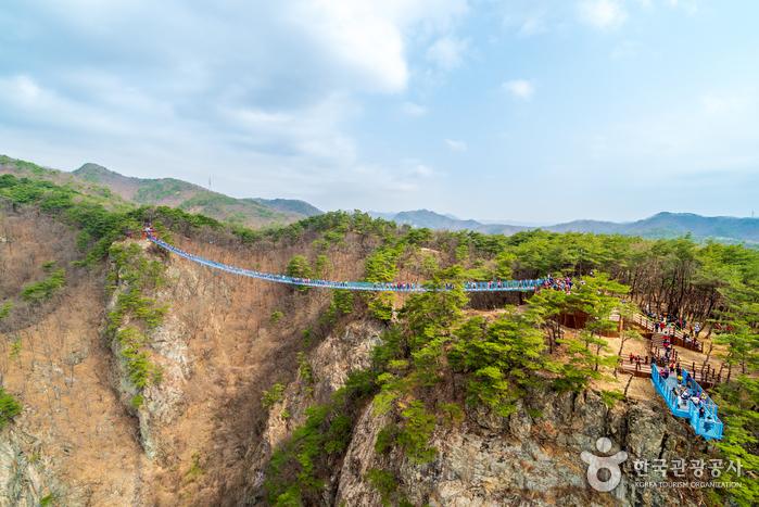 原州_枫树_铁路自行车_在线预订-韩游网