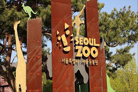 韩币 1400 韩币 动物园照片欣赏        大象鼻子车其实是一个首尔大