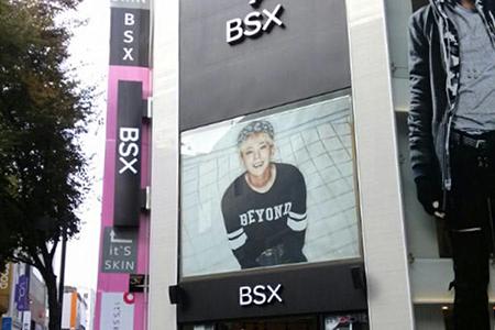 bsx2.jpg