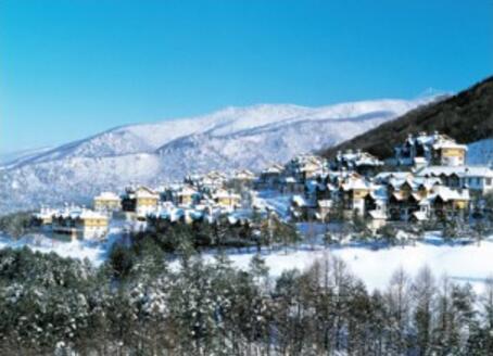 阿尔卑斯度假村.jpg