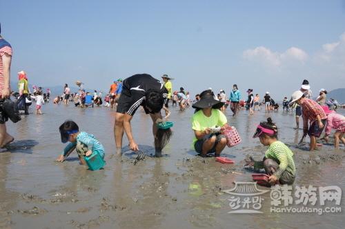 高敞海滩庆典.JPG