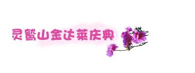 灵鹫山金达莱庆典.jpg