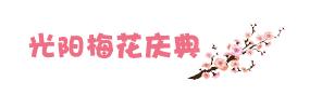 光阳梅花庆典.jpg