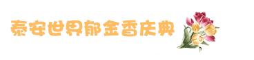 泰安世界郁金香庆典.jpg