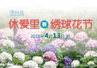 4月济州岛的浪漫,休爱里春季绣球花节