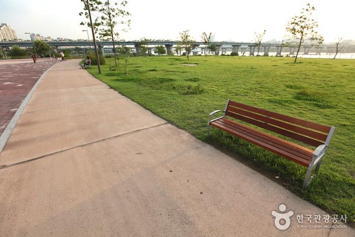 广渡口汉江公园.jpg