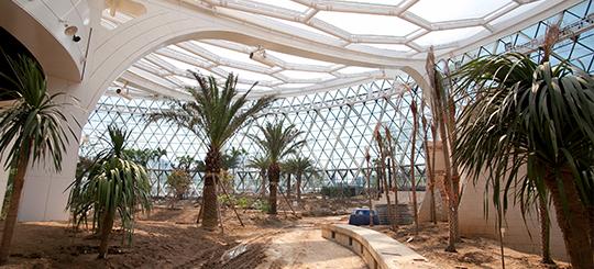 greenhouse02.jpg
