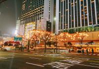 """12月1日起,""""年末专用""""猫头鹰公交车路线将在江南、弘大等地运行"""