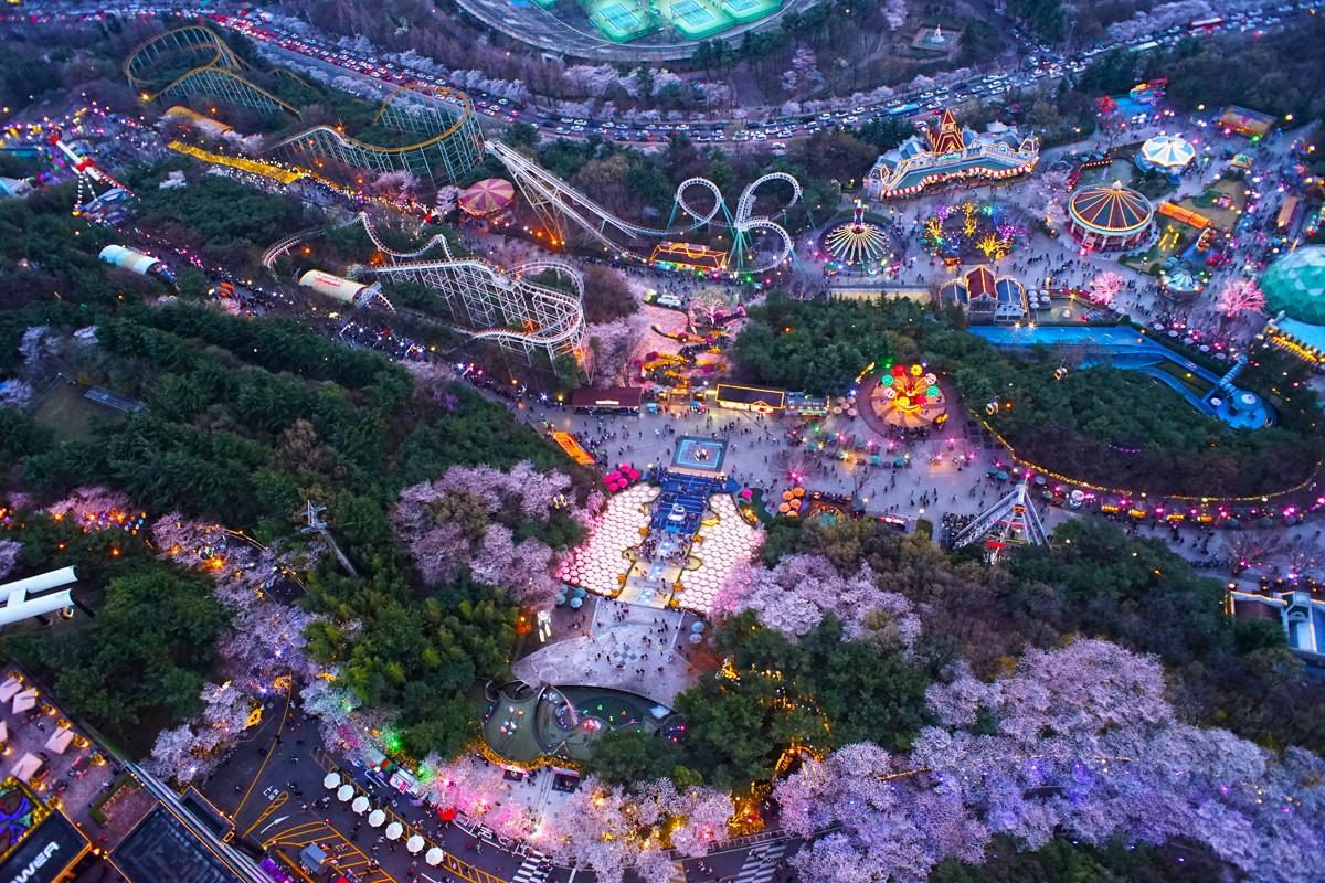 이월드별빛벚꽃축제 (2)_1.jpg