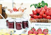 """忠清南道""""论山草莓庆典"""""""