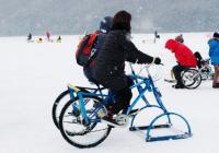 """京畿道""""抱川山井湖水雪橇节"""""""