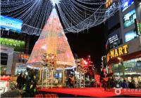 以爱与和平为主题的庆典——2019釜山圣诞树文化节