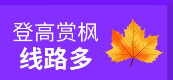 韩游秋季狂欢