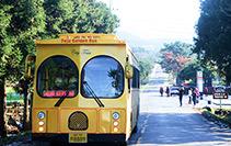济州岛黄金巴士车票