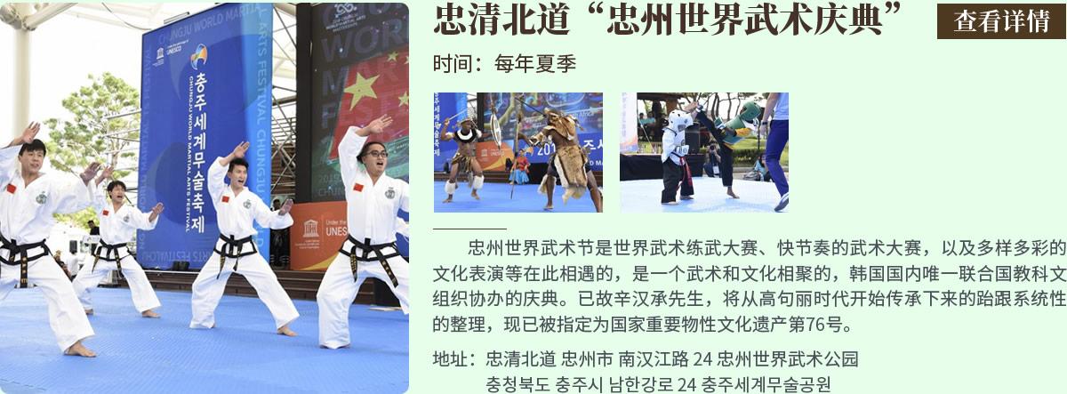 忠清北道忠州世界武术庆典