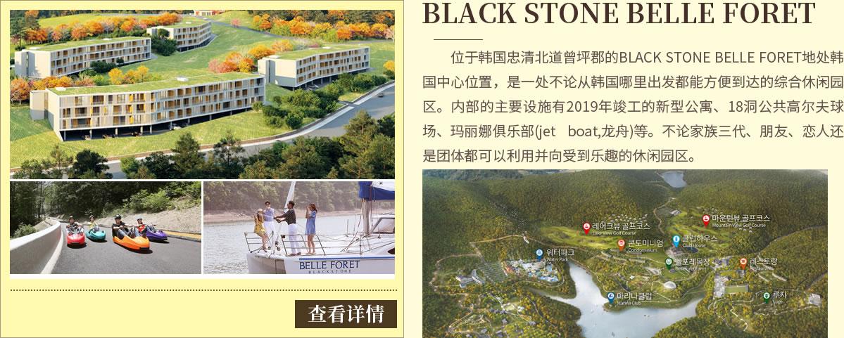 忠清北道BLACK STONE BELLE FORET(观光特区)