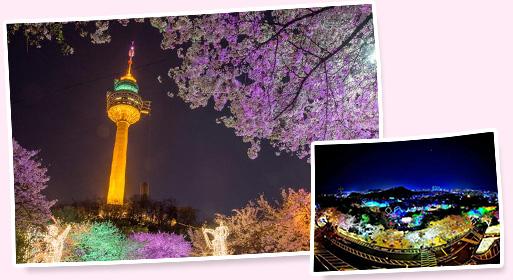 E-WORLD 星光樱花庆典