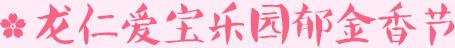 龙仁爱宝乐园郁金香节