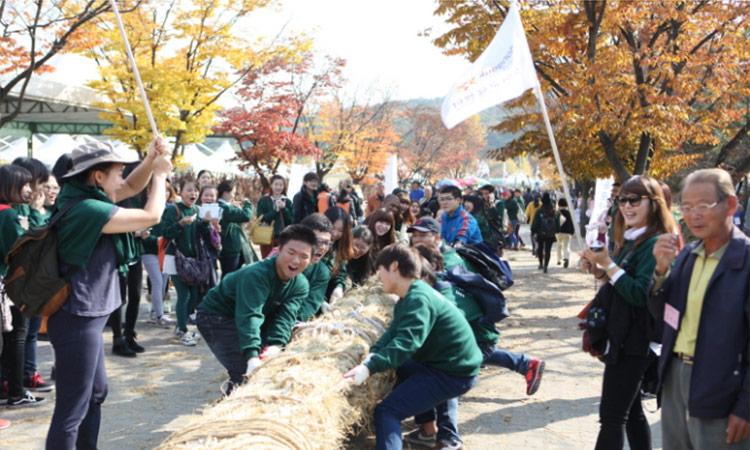 利川大米文化节