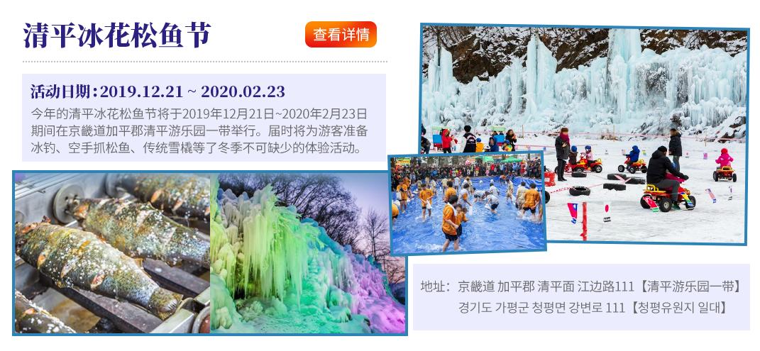 京畿道清平冰花松魚節2020