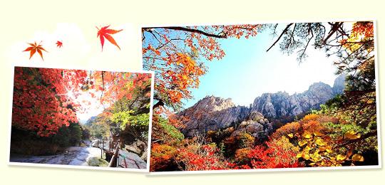 江原道雪岳山