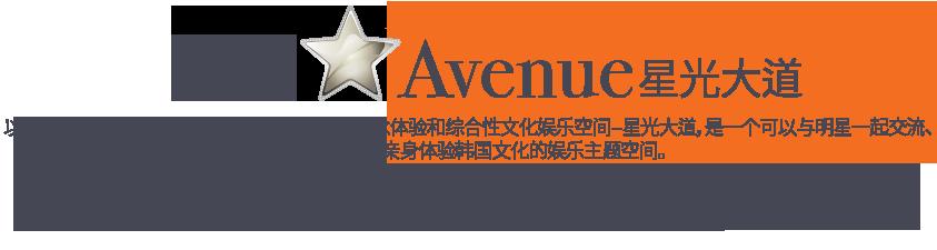 STAR Avenue 星光大道