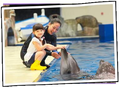 济州Aqua planet水族馆门票预订