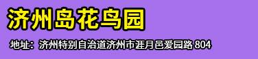 济州PLAY KPOP(BIGBANG CONCERT)
