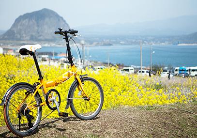 济州岛绿色自行车租赁_韩国景点_韩游网