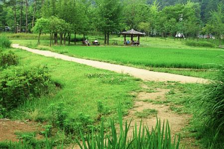 波拉梅公园_韩国景点_韩游网