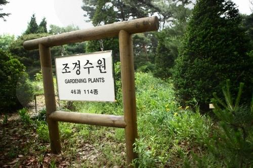 洪陵树木园_韩国景点_韩游网