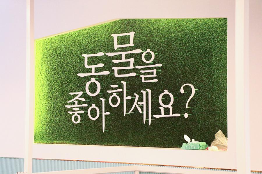 大学路 狐獴乐园 咖啡厅_韩国美食_韩游网