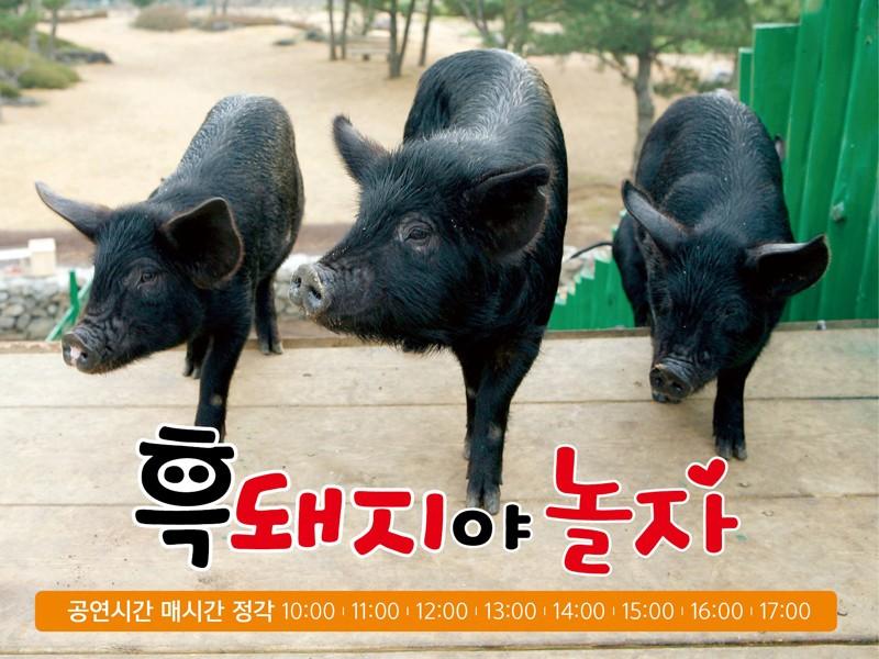 G疙前 孺蹬瘤碱 & 芭困碱 (1).jpg