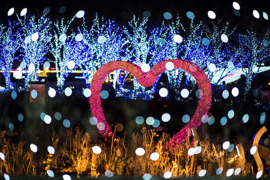 釜山一路美呀燈火主題樂園_韓國景點_韓遊網