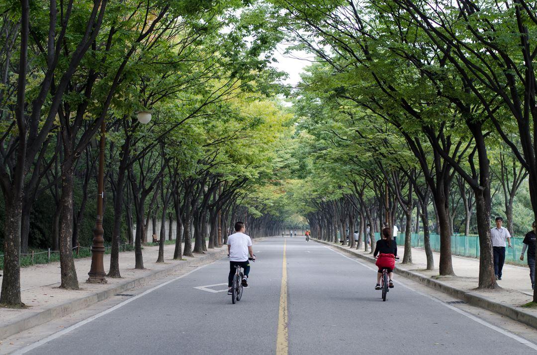 仁川大公园_韩国景点_韩游网