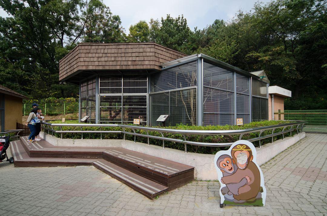 仁川大公园内的儿童动物园拥有45种多达280余只动物.