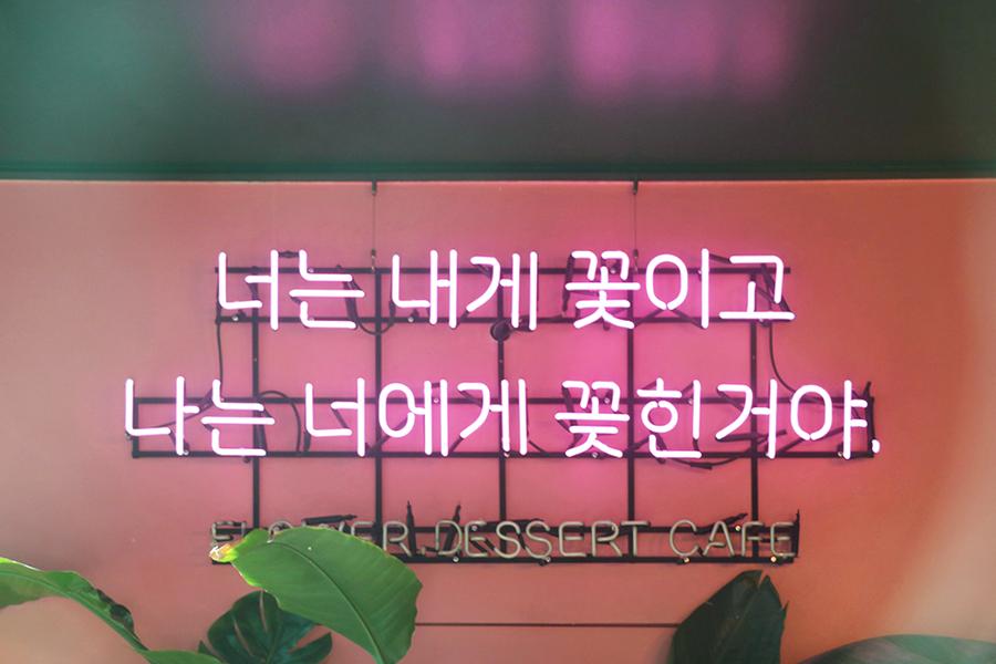 弘大 momora 鲜花 咖啡店_韩国美食_韩游网