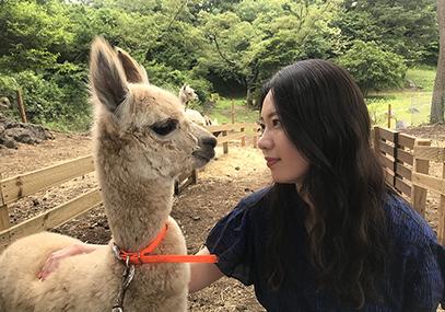 济州岛花鸟园_韩国景点_韩游网