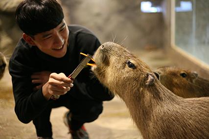 首尔THE ZOO室内动物园_韩国景点_韩游网
